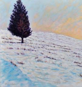 Lone Cedar in Winter